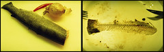 Home life_2011_086 copy (nefotografas) Tags: food fish film home lens iso200 diptych vista trout agfa expired lithuania vilnius helios442 102009 exa1b