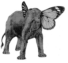 Papillphant (Maic Batmane) Tags: animal collage illustration monsters freaks monstres