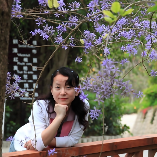 beauty and purple leaves tree