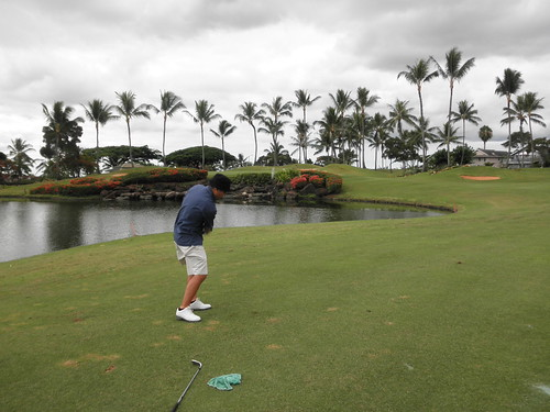 WAIKELE COUNTRY CLUB 072