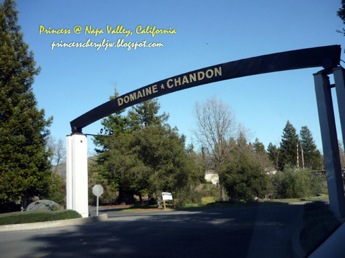 Domaine Chandon Napa Valley 05