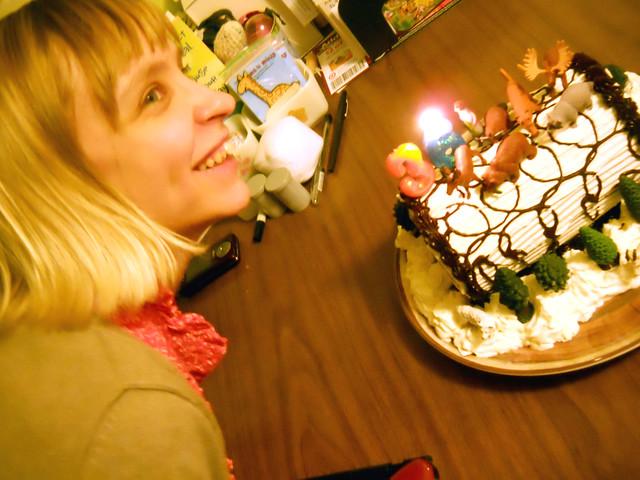 CAKE 8911