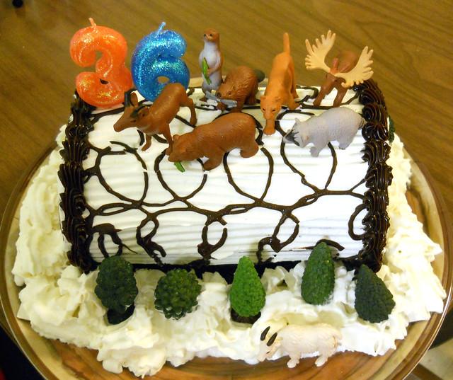 CAKE 8897
