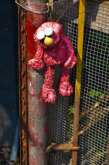 258/365 - September 15, 2011 - Tragedy on Sesame Street