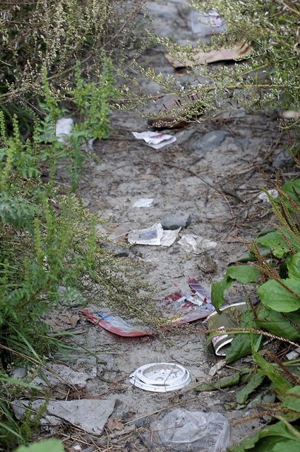 trashy beach path close up