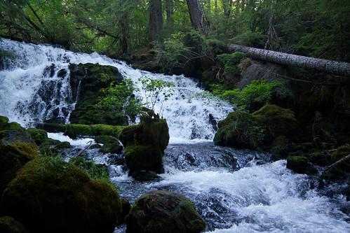 Pearsoney Falls, Prospect OR