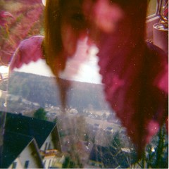 flower power (Mandy Mnzner) Tags: pink flowers portrait green deutschland lomo colours diana split dianaf lomografie