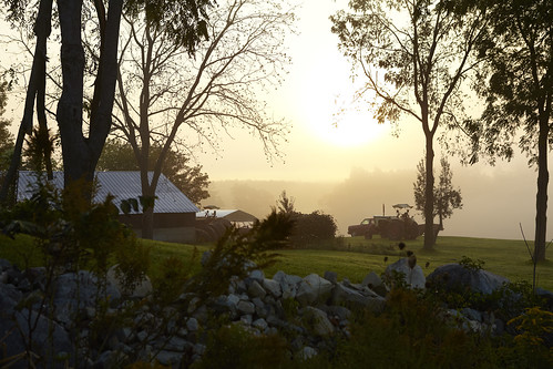 Zachs_Farm_Fall_ 2011_49