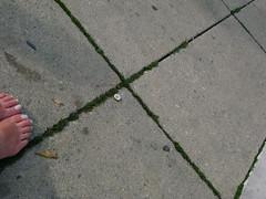 SOMETHING*SOMEWHERE by Wolfgang Wildner (Wolfgang Wildner) Tags: art feet foot austria photo sterreich foto kunst picture event reality tradition bild fest graz mode veranstaltung something somewhere ding blick steiermark styria dirndl etwas alltag fus gegenstand kleid beobachtung irgendwo tracht zufall trachten realitt wildner volkstum wolfgangwildner aufsteirern fse
