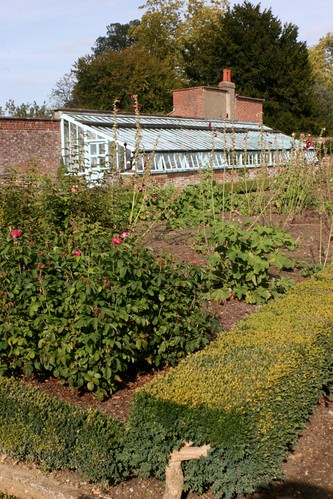 Darwin's greenhouse and kitchen garden