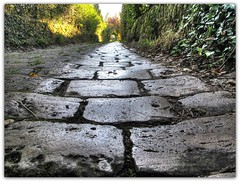 Cobbled Road (Habub3) Tags: road park street city travel autumn holiday nature stone forest canon germany garden landscape deutschland vanishingpoint flora europa europe pattern stuttgart urlaub herbst natur perspective powershot steine stadt grn cobbles landschaft wald garten hdr vacanze perspektive weg reise pflaster g12 2011 kopfsteinpflaster strase fluchtpunkt viewonblack habub3 mygearandme