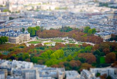 jardin du luxembourg miniature (bmrg) Tags: above trees people urban paris france green history nature museum architecture garden french boats miniature interesting king walk lakes visit palace musee queen latinquarter jardinduluxembourg tiltshift 2011 palaisduluxembourg 6tharrondissement