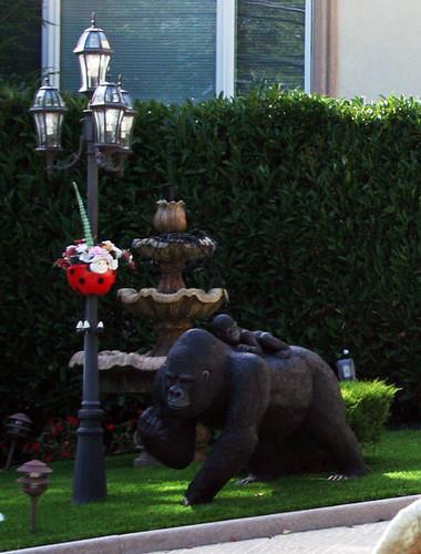 Zoo House (24)