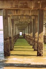 Coney Island Peir (paperingasmile) Tags: ocean sea coneyisland vanishingpoint perspective boardwalk breaker peir barnacle mindfuck encrusted tideline nothatseconduprightinontheleftisntstraight yesitbugsme thinkthepeirllcollapsebecauseofit