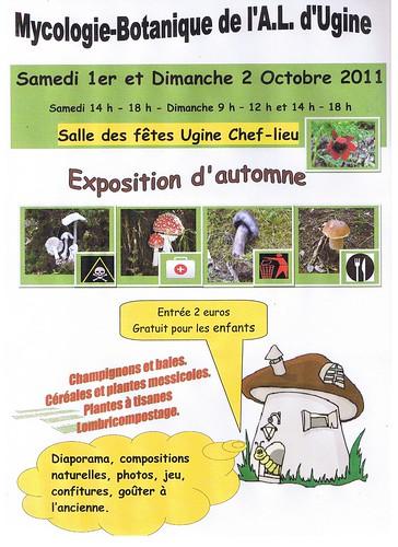 Affiche expo automne 2011scannée 001