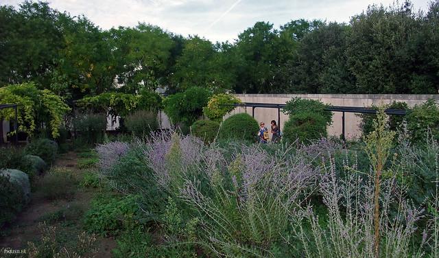 Très beau jardin, avec des plantes variées