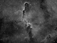 The Elephant Trunk - Ha (Horizon Astro) Tags: Astrometrydotnet:status=solved Astrometrydotnet:version=14400 Astrometrydotnet:id=alpha20111047287315