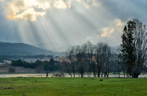 nuevo dia en la laguna by carlos_d700