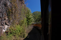 Great Smoky Mountains Railroad-91