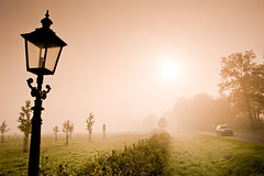 Lonely Lantern in the fog, Amelisweerd 2011