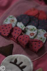 ؛ (AFNAN K.H - أفنان خالد) Tags: pink red brown white black bird eye circle triangle beak violet owl eyelash عين أبيض عصفور أحمر بنفسجي أسود بني زهري رمش مثلث بومة دائرة منقار