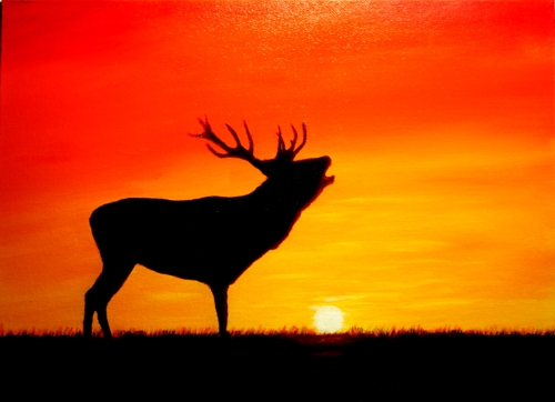 Elk at sunset by Sid's art