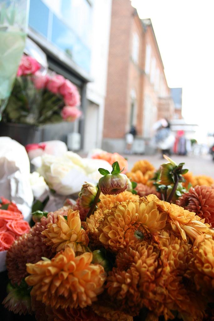 holbæk streetside flowers
