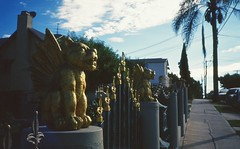 Gold Guards (bikehitscar) Tags: california ca blue 2 sky lake color colour film animal clouds 35mm fence silver point gold los saturated gate shoot very angeles kodak grain slide gargoyle e silverlake push 100 vs mm guards 35 processed e100vs yashica t4 stops dx reversal