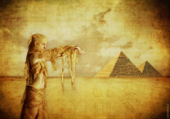 * The Sands Of Egypt *