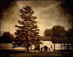 Sanctuary (MEaves) Tags: tree stone sepia illinois midwest fort structure gateway walls toned defensive protection fortress soe sanctuary textured k10d pentaxk10d pentaxart flickrstruereflection1 flickrstruereflection2