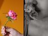 لأنني قلتهآ لك يوماً : اُحبّك (TAGHEREEDSULAIMAN) Tags: تصوير ورده منار يد ميمي توتو توتا ٥٠٠ منوري