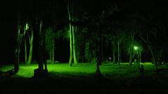 20102011841