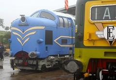 DP1 55009 (ijr65) Tags: dp1 55009 class55br