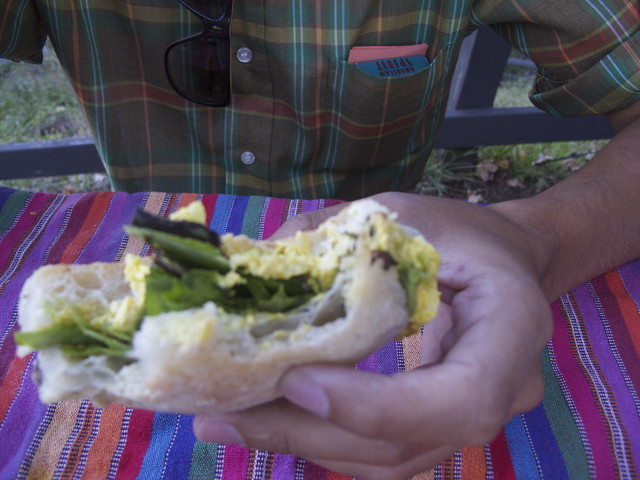 faux egg salad star of the picnic