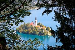 Lake Bled (whitworth images) Tags: blue trees lake church water island aqua europe framed steeple spire slovenia pines bled lakebled gorenjska