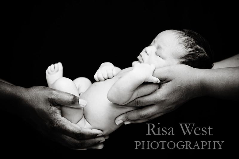 katie_newborn-50