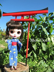 My Donation for BlytheCon UK 2011 Yumiko Custom Doll by MoleDolls