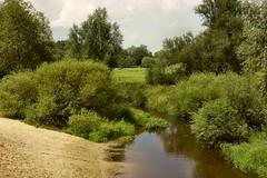 Same scape as previous shot, only a bit closer :) (joeke pieters) Tags: holland nature netherlands river stream beek nederland brook twente overijssel rivier lutterzand dinkel 4754