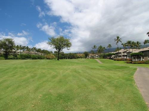 Maui Chiaki 911