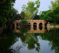 Medieval bridge (Mattnet) Tags: park bridge trees parco plants india lake reflection gardens puente lago pond arboles delhi indian islam tomb jardin lac arches medieval ponte arbres reflect mausoleum reflejo pont piante arco medievale tomba islamic giardino lodhi arcos archi lodi riflesso mausoleo mughal stagno lodigardens etaing mygearandme mygearandmepremium dblringexcellence flickrstruereflection2 flickrstruereflection3 estanche