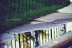 Puddle (Chaos&BlissPhotography) Tags: reflection water puddle hff fencefriday blinkagain