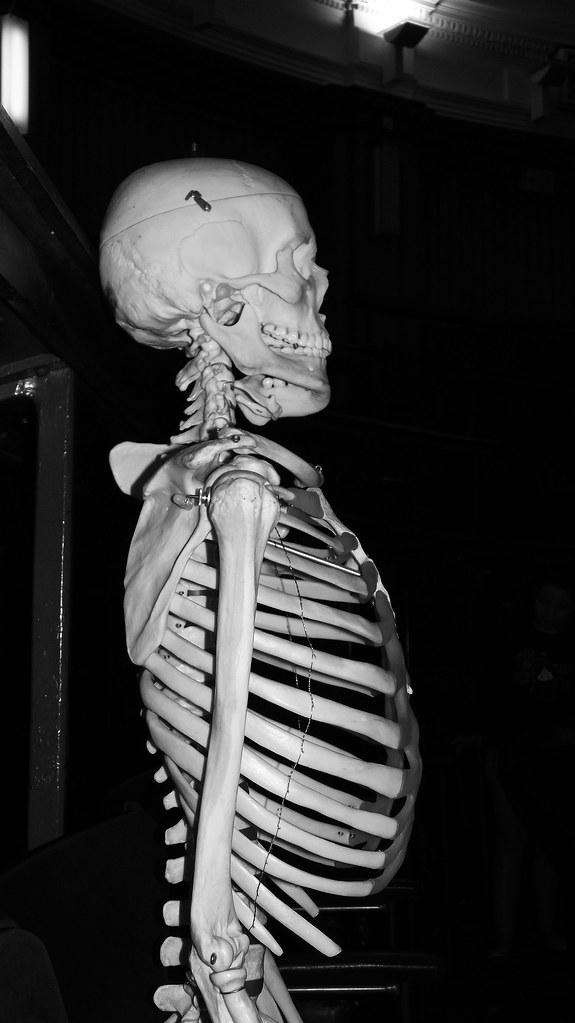 dem bones dem bones dem dry bones