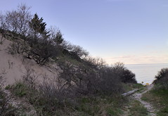 Aeolian Sand Deposit (sandy richard) Tags: geology wildwood wildwoodstatepark newyorkstateparks longislandbeaches sandyrichard longislandgeology sandrarichard wildwoodstateparkgeology