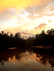 Autumn Equinox on Blackwater 3 (echoroo) Tags: sunset yellow florida rivers blackwater refelection