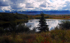 Denali Landscape (blmiers2) Tags: travel blue red orange mountain mountains green nature alaska clouds landscape nikon purple coolpix denali s3000 denalilandscape blm18 blmiers2