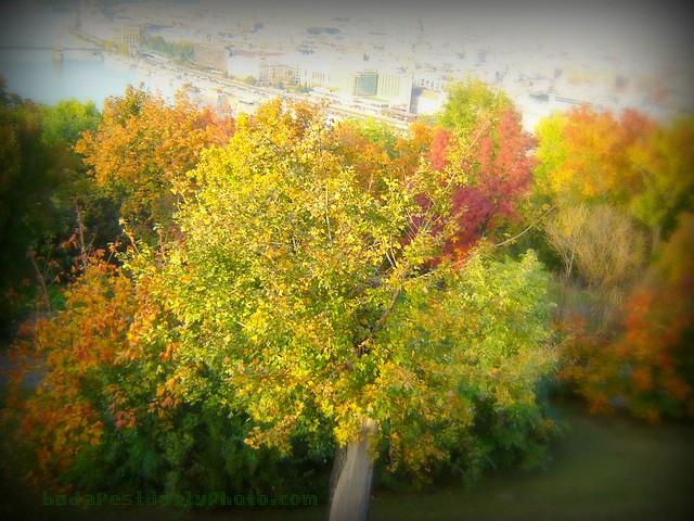 Autumn in Budapest by Zannnie