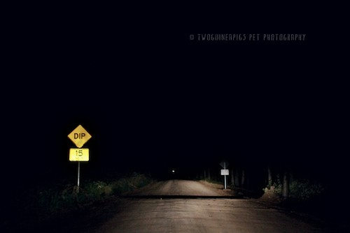 Night scene on the road in Lovedale, by twoguineapigs pet photography
