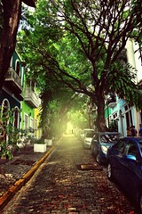 (donchris!) Tags: old city trees house tree colors point puerto casa san juan dom couleurs haus colores rico arbres rbol caribbean vanishing albero colori bume arbre baum farben caribe kolory accueil karibik drzewo drzewa fluchtpunkt flichtpunkt