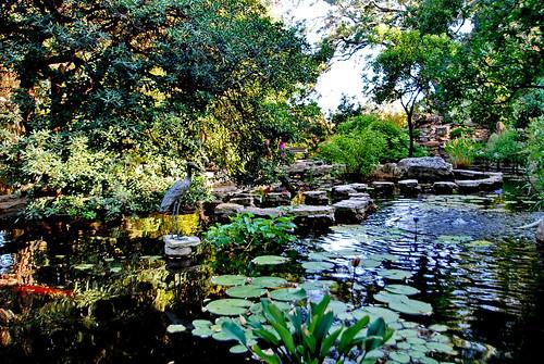 Zilker Botanical Gardens Austin Texas a photo on