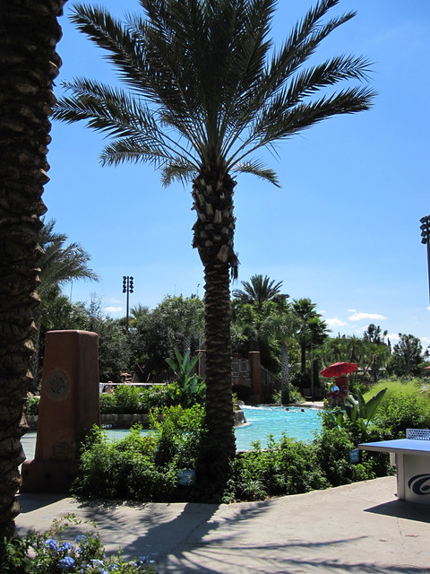 Palms over the Samawati Springs Pool